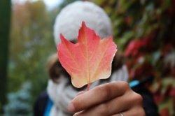 Autumn dating buzzwords